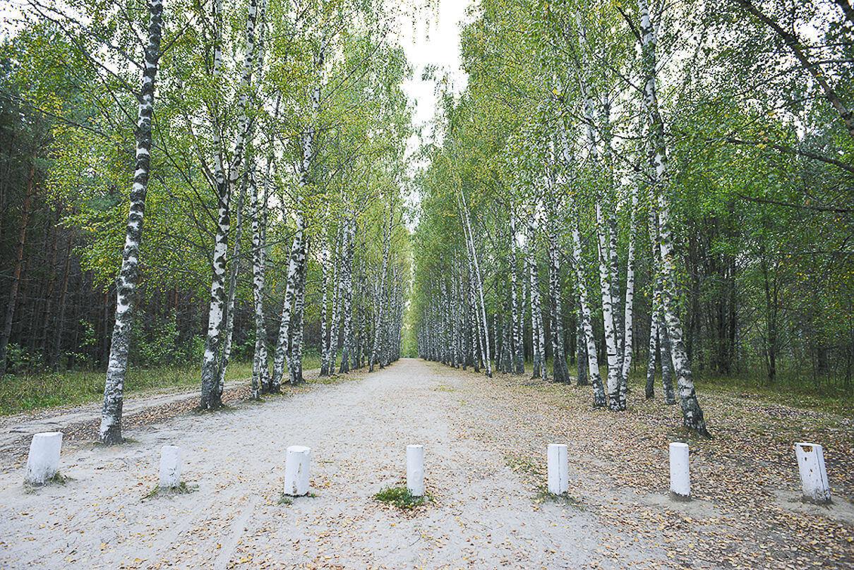 На машине к озеру путь закрыт: к святыне извольте идти пешком